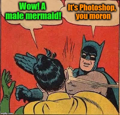 Batman Slapping Robin Meme | Wow! A male mermaid! It's Photoshop,  you moron | image tagged in memes,batman slapping robin | made w/ Imgflip meme maker