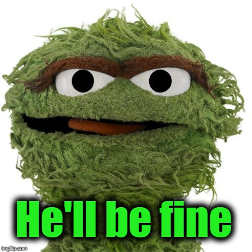 Oscar The Grouch | He'll be fine | image tagged in oscar the grouch | made w/ Imgflip meme maker