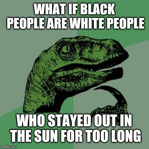 Philosoraptor | WHAT IF BLACK PEOPLE ARE WHITE PEOPLE WHO STAYED OUT IN THE SUN FOR TOO LONG | image tagged in memes,philosoraptor,black people,white people | made w/ Imgflip meme maker