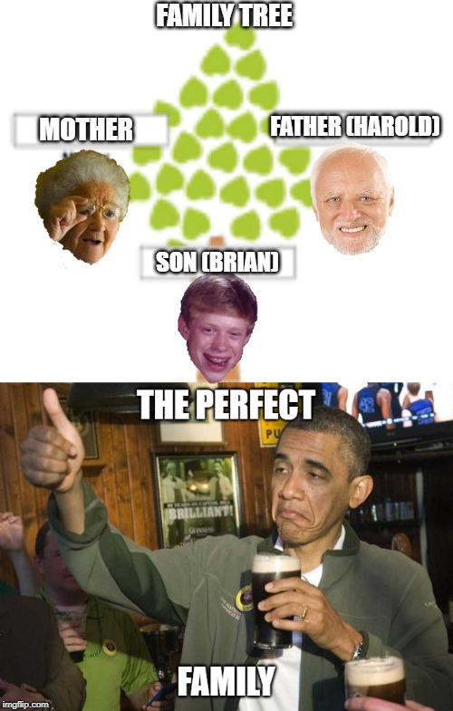 Family Tree | FAMILY TREE MOTHER FATHER (HAROLD) SON (BRIAN) | image tagged in memes,funny,grandma finds the internet,hide the pain harold,bad luck brian,obama | made w/ Imgflip meme maker