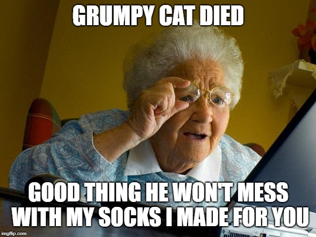 MEan grandma | GRUMPY CAT DIED GOOD THING HE WON'T MESS WITH MY SOCKS I MADE FOR YOU | image tagged in memes,grandma finds the internet,socks,grumpy cat | made w/ Imgflip meme maker