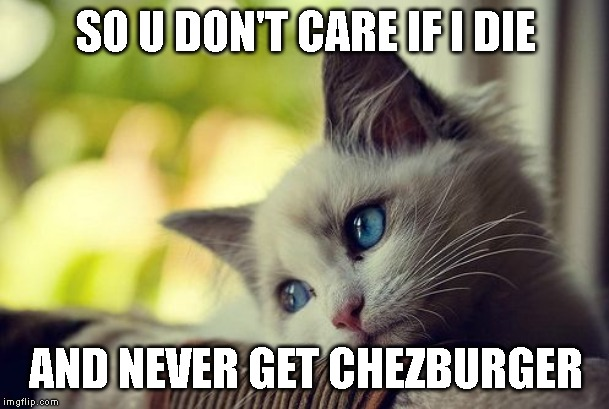 First World Problems Cat Meme | SO U DON'T CARE IF I DIE AND NEVER GET CHEZBURGER | image tagged in memes,first world problems cat | made w/ Imgflip meme maker