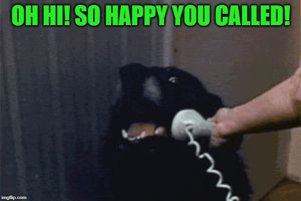 Dog Phone | OH HI! SO HAPPY YOU CALLED! | image tagged in dog phone | made w/ Imgflip meme maker