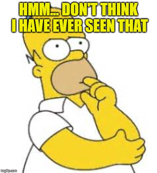Homer Simpson Hmmmm | HMM... DON'T THINK I HAVE EVER SEEN THAT | image tagged in homer simpson hmmmm | made w/ Imgflip meme maker