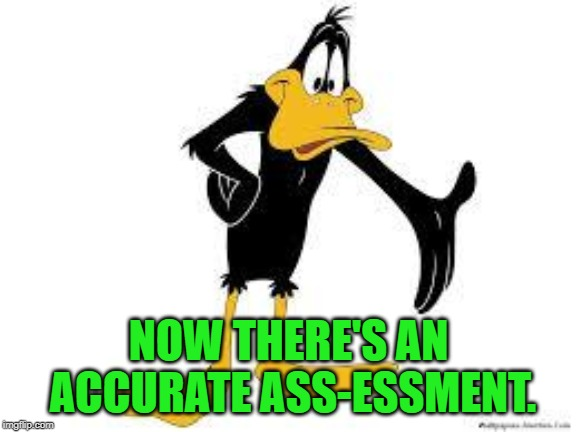 Daffy Duck Welcome | NOW THERE'S AN ACCURATE ASS-ESSMENT. | image tagged in daffy duck welcome | made w/ Imgflip meme maker