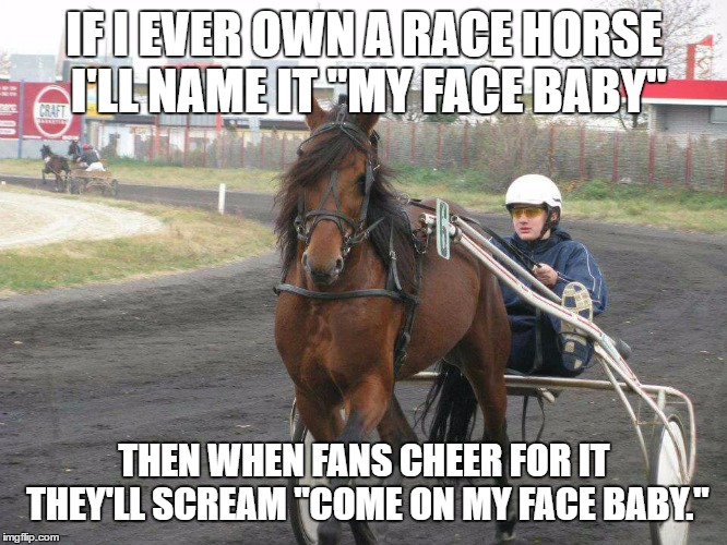 "I can see that happening. | IF I EVER OWN A RACE HORSE I'LL NAME IT ""MY FACE BABY"" THEN WHEN FANS CHEER FOR IT THEY'LL SCREAM ""COME ON MY FACE BABY."" 