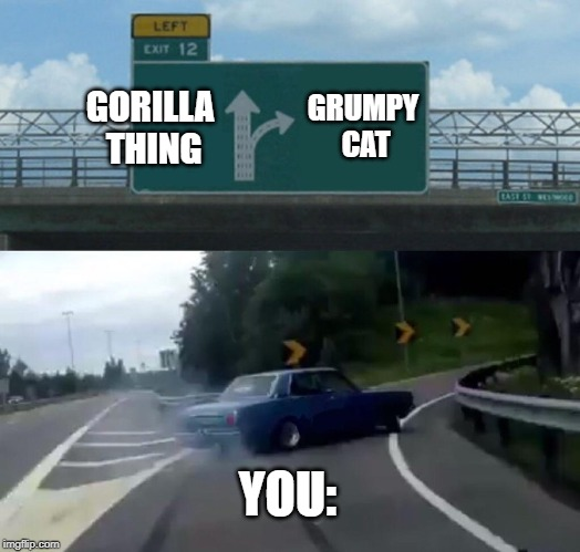 GORILLA THING GRUMPY CAT YOU: | image tagged in memes,left exit 12 off ramp | made w/ Imgflip meme maker