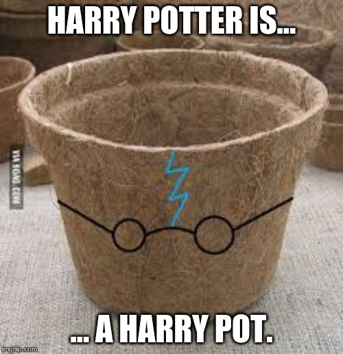 Harry Potter's true form. | HARRY POTTER IS... ... A HARRY POT. | image tagged in funny,memes,bully,bullshit,nonsense,harry potter meme | made w/ Imgflip meme maker