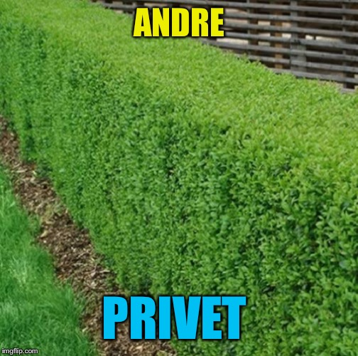 ANDRE PRIVET | made w/ Imgflip meme maker
