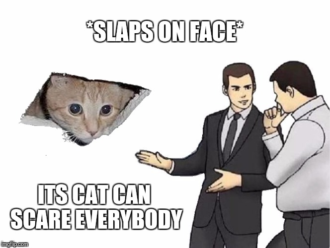 Car Salesman Slaps Hood Meme | *SLAPS ON FACE* ITS CAT CAN SCARE EVERYBODY | image tagged in memes,car salesman slaps hood | made w/ Imgflip meme maker