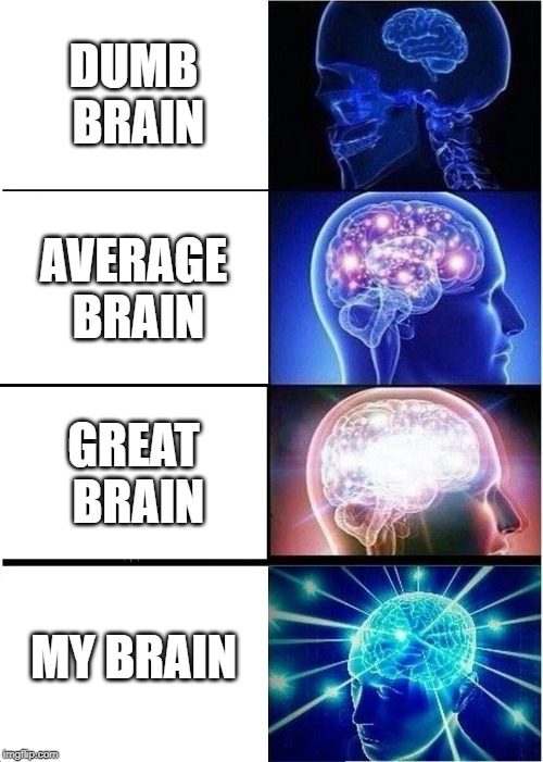 Expanding Brain |  DUMB BRAIN; AVERAGE BRAIN; GREAT BRAIN; MY BRAIN | image tagged in memes,expanding brain | made w/ Imgflip meme maker