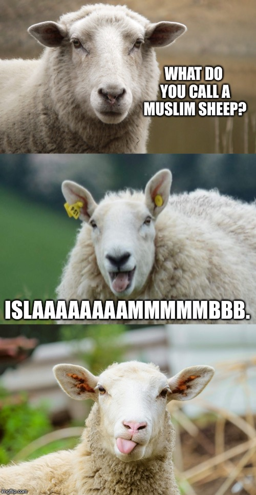 "You can't say Islam without saying ""lamb"" 