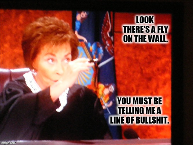LOOK THERE'S A FLY ON THE WALL. YOU MUST BE TELLING ME A LINE OF BULLSHIT. | image tagged in judge judy,bullshit | made w/ Imgflip meme maker