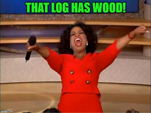 Oprah You Get A Meme | THAT LOG HAS WOOD! | image tagged in memes,oprah you get a | made w/ Imgflip meme maker