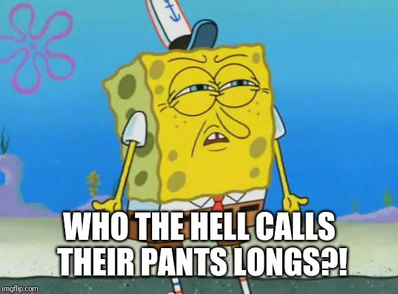Angry Spongebob | WHO THE HELL CALLS THEIR PANTS LONGS?! | image tagged in angry spongebob | made w/ Imgflip meme maker