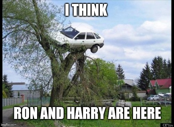 Secure Parking | I THINK RON AND HARRY ARE HERE | image tagged in memes,secure parking | made w/ Imgflip meme maker