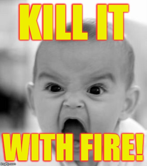 Angry Baby Meme | KILL IT WITH FIRE! | image tagged in memes,angry baby | made w/ Imgflip meme maker