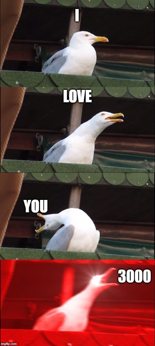 Inhaling Seagull Meme | I LOVE YOU 3000 | image tagged in memes,inhaling seagull | made w/ Imgflip meme maker