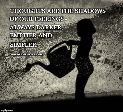 THOUGHTS ARE THE SHADOWS OF OUR FEELINGS - ALWAYS DARKER, EMPTIER AND SIMPLER. -FRIEDRICH NEITZSCHE- | image tagged in shadows,feelings,empty,dark side | made w/ Imgflip meme maker