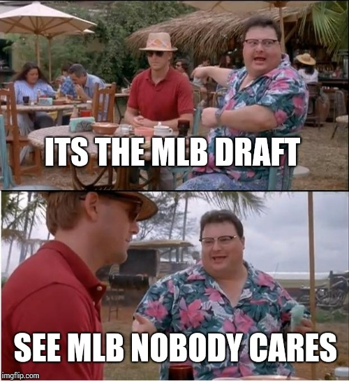 See Nobody Cares | ITS THE MLB DRAFT SEE MLB NOBODY CARES | image tagged in memes,see nobody cares | made w/ Imgflip meme maker