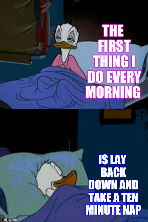 Life Is Hard.  Sleep Is Good. |  THE FIRST THING I DO EVERY MORNING; IS LAY BACK DOWN AND TAKE A TEN MINUTE NAP | image tagged in sleepy donald duck in bed,sweet dreams,nap time,alarm clock,true dat,memes | made w/ Imgflip meme maker
