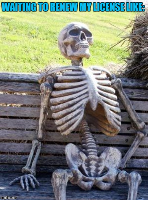 Waiting Skeleton | WAITING TO RENEW MY LICENSE LIKE: | image tagged in memes,waiting skeleton | made w/ Imgflip meme maker
