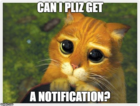 Pliz :( | CAN I PLIZ GET A NOTIFICATION? | image tagged in memes,shrek cat,pliz give me notifications | made w/ Imgflip meme maker
