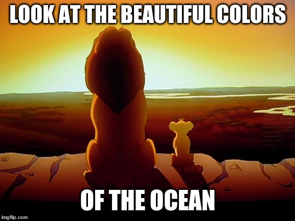 Lion King Meme |  LOOK AT THE BEAUTIFUL COLORS; OF THE OCEAN | image tagged in memes,lion king | made w/ Imgflip meme maker