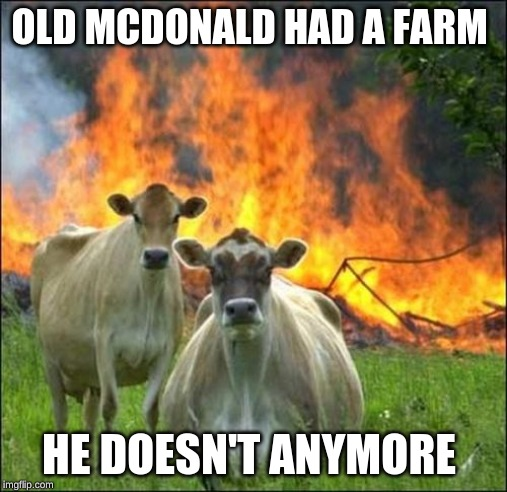 Evil Cows | OLD MCDONALD HAD A FARM HE DOESN'T ANYMORE | image tagged in memes,evil cows | made w/ Imgflip meme maker