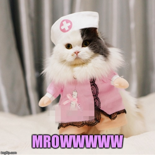 MROWWWWW | made w/ Imgflip meme maker