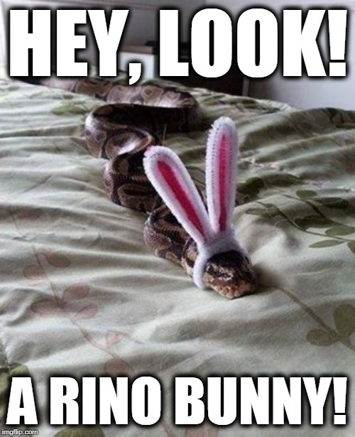 RINO snakes | HEY, LOOK! A RINO BUNNY! | image tagged in fake republicans,rinos,traitors,double-faced rinos,retarded rinos | made w/ Imgflip meme maker