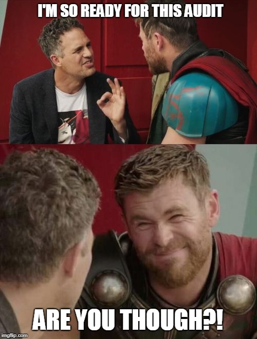Thorditing |  I'M SO READY FOR THIS AUDIT; ARE YOU THOUGH?! | image tagged in funny memes,thor ragnarok | made w/ Imgflip meme maker