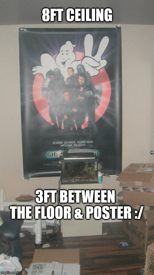 8FT CEILING 3FT BETWEEN THE FLOOR & POSTER :/ | made w/ Imgflip meme maker