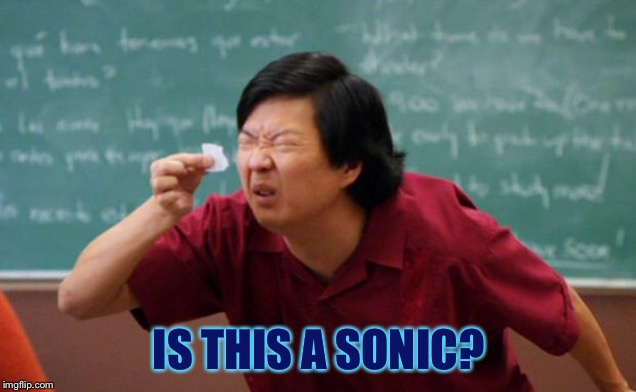 Tiny piece of paper | IS THIS A SONIC? | image tagged in tiny piece of paper | made w/ Imgflip meme maker