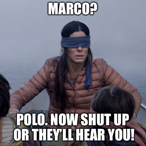 Bird Box Meme | MARCO? POLO. NOW SHUT UP OR THEY'LL HEAR YOU! | image tagged in memes,bird box | made w/ Imgflip meme maker