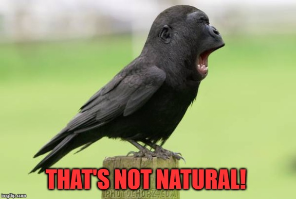 animals | THAT'S NOT NATURAL! | image tagged in animals | made w/ Imgflip meme maker