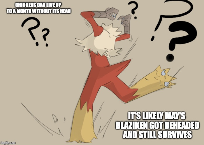 Headless Blaziken | CHICKENS CAN LIVE UP TO A MONTH WITHOUT ITS HEAD IT'S LIKELY MAY'S BLAZIKEN GOT BEHEADED AND STILL SURVIVES | image tagged in blaziken,pokemon,memes | made w/ Imgflip meme maker