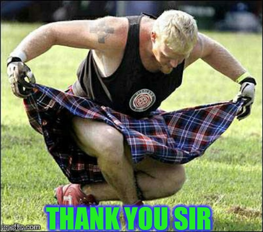 Bow | THANK YOU SIR | image tagged in bow | made w/ Imgflip meme maker