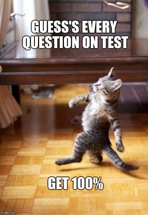 Cool Cat Stroll |  GUESS'S EVERY QUESTION ON TEST; GET 100% | image tagged in memes,cool cat stroll | made w/ Imgflip meme maker