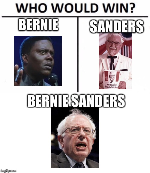 Who would win | BERNIE SANDERS BERNIE SANDERS | image tagged in blank white template,memes,who would win | made w/ Imgflip meme maker