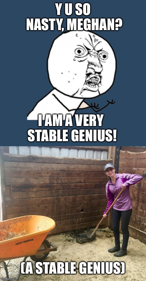Y U SO NASTY, MEGHAN? I AM A VERY STABLE GENIUS! (A STABLE GENIUS) | image tagged in memes,y u no | made w/ Imgflip meme maker