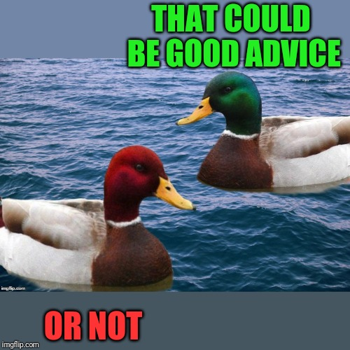 Good Duck/Bad Duck | THAT COULD BE GOOD ADVICE OR NOT | image tagged in good duck/bad duck | made w/ Imgflip meme maker