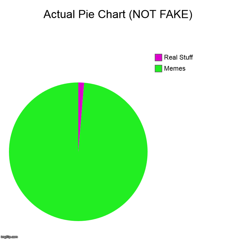 Reality Pie Chart | Actual Pie Chart (NOT FAKE) | Memes, Real Stuff | image tagged in reality,memes | made w/ Imgflip chart maker