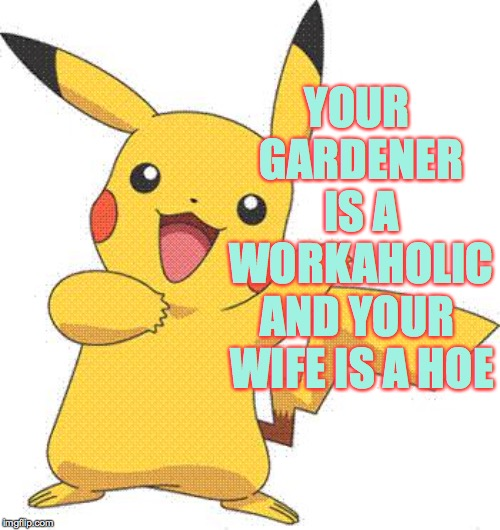 Pokemon | YOUR GARDENER IS A WORKAHOLIC AND YOUR WIFE IS A HOE | image tagged in pokemon | made w/ Imgflip meme maker