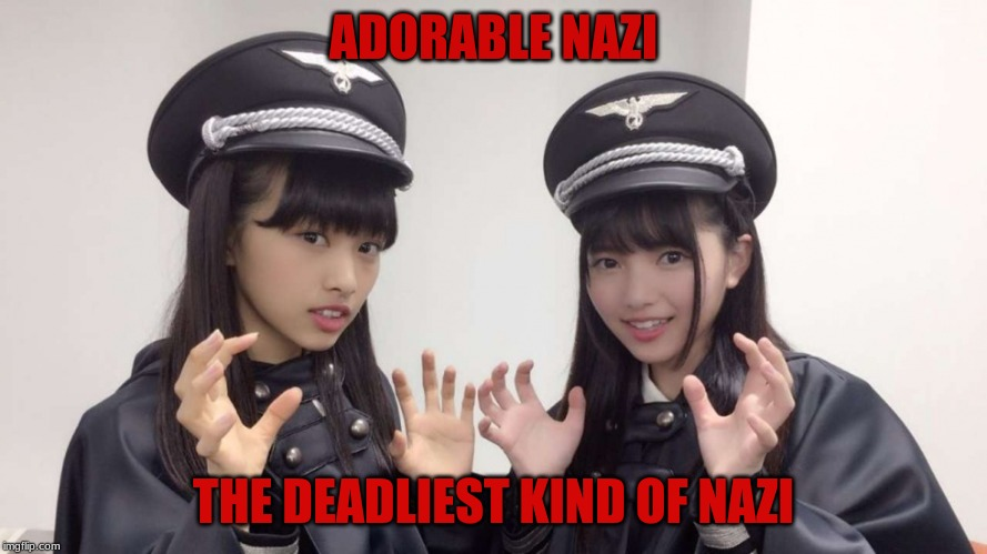 Adorable Nazi | ADORABLE NAZI THE DEADLIEST KIND OF NAZI | image tagged in nazi,japan,cosplay,humor,flipout | made w/ Imgflip meme maker