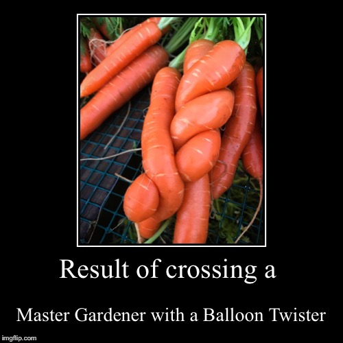 Result of crossing a | Master Gardener with a Balloon Twister | image tagged in funny,demotivationals | made w/ Imgflip demotivational maker