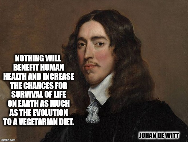 JOHAN DE WITT NOTHING WILL BENEFIT HUMAN HEALTH AND INCREASE THE CHANCES FOR SURVIVAL OF LIFE ON EARTH AS MUCH AS THE EVOLUTION TO A VEGETAR | image tagged in johan de witt | made w/ Imgflip meme maker