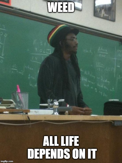 Rasta Science Teacher |  WEED; ALL LIFE DEPENDS ON IT | image tagged in memes,rasta science teacher | made w/ Imgflip meme maker