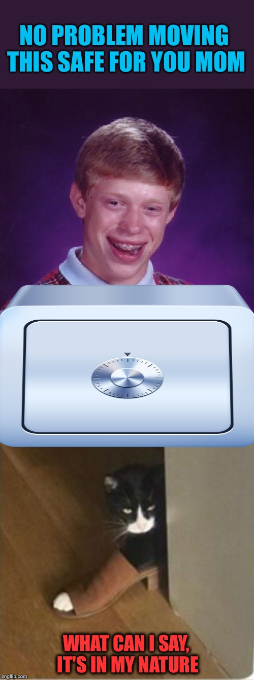 He's going down.  It's a shoe in. | NO PROBLEM MOVING THIS SAFE FOR YOU MOM WHAT CAN I SAY, IT'S IN MY NATURE | image tagged in memes,bad luck brian,safe,funny | made w/ Imgflip meme maker