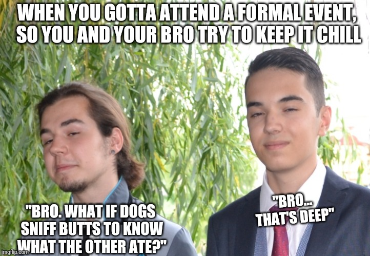 "Proms aren't for everybody | WHEN YOU GOTTA ATTEND A FORMAL EVENT, SO YOU AND YOUR BRO TRY TO KEEP IT CHILL ""BRO. WHAT IF DOGS SNIFF BUTTS TO KNOW WHAT THE OTHER ATE?"" "" 